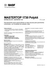 Mastertop 1730 Polykit