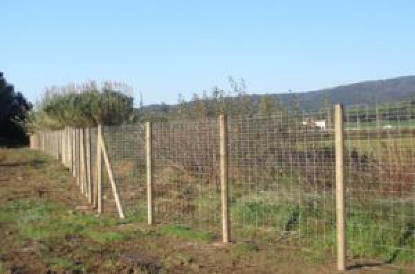 Cerramientos y vallados construm tica - Vallados y jardines ...