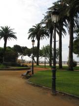 Imagen de Columna Naranjo