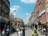Imagen de Columna Drac 5, 6m