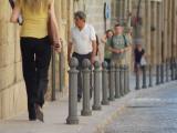 Imagen de Pilona Vía Trajana