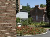 Imagen de Ladrillo cara vista - gama Añejos